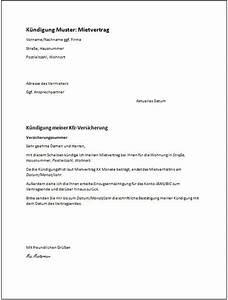 Kündigungsschreiben Wohnung Mieter : muster k ndigung mietvertrag vermieter k ndigung vorlage ~ Lizthompson.info Haus und Dekorationen