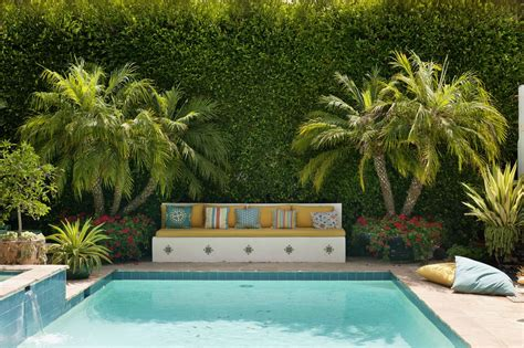 best plants around swimming pool the best plants for swimming pool landscaping