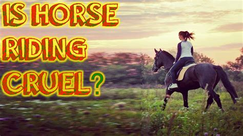 horse riding cruel vegan horses horseback stance animals take sports bite