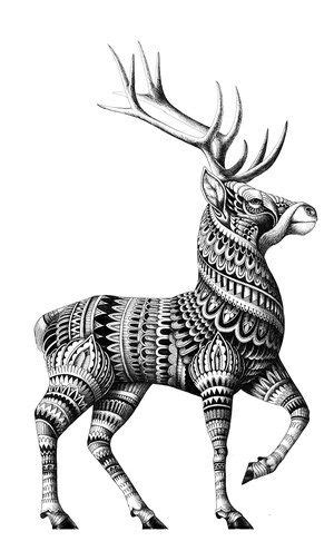 Commissions — Iain Macarthur | Zentangle drawings, Graphic