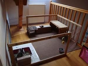Maison Pour Lapin : vos installations pour vos lapins ~ Premium-room.com Idées de Décoration