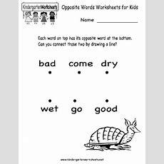 Opposite Words Worksheets Kids Printable  Family  Kids Learning  Worksheets For Kids