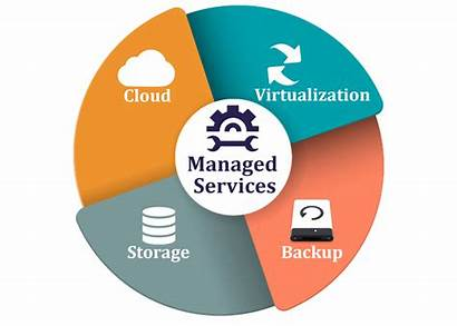 Managed Provider Services Service Management Business Need