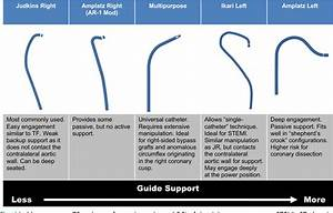 Diagnostic And Guide Catheter Selection And Manipulation