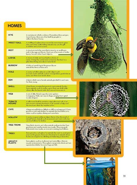 animal homes  habitats national geographic society