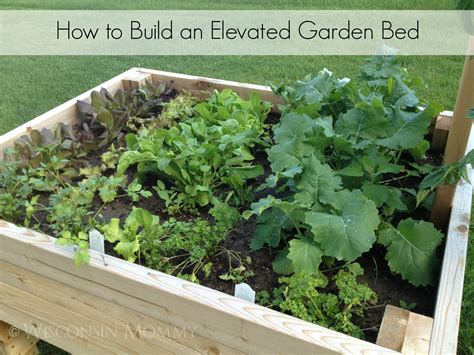 how to make garden build your own elevated raised garden bed