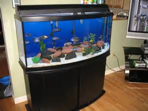 Fish Tanks Bow Front Aquarium