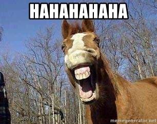 Gay Horse Meme - hahahahaha horse meme generator