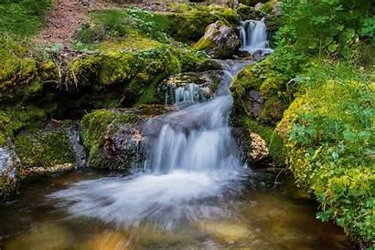 River Jungle Waterfalls Rocks Stones Canada Forest