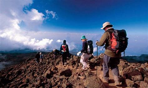 Shira Route - Kilimanjaro