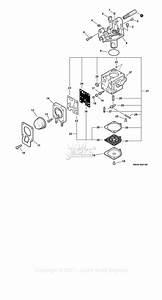 Echo Ppt-265 S  N  E09912001001 - E09912999999 Parts Diagram For Carburetor