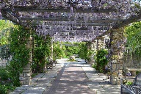 idaho botanical garden 17 best images about beautiful gardens on