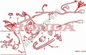 Wire Harness   Ignition Coil For Honda Cmx 450 C Rebel 1986