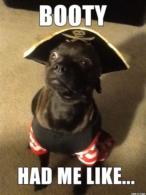shared    seas   hilarious pirate memes