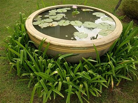 lotus garden thai 58 photos 42 best garden stuff images on garden