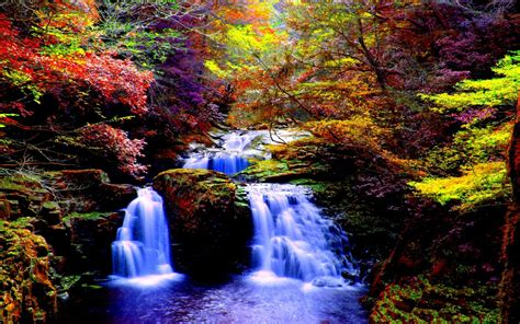 Autumn Forest Waterfall Hd Wallpaper Background Image 2560x1600 Id709169 Wallpaper Abyss