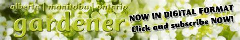 wildflowers   garden canadas local gardener magazine
