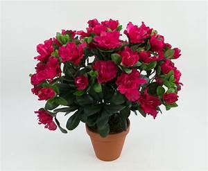 Künstliche Blumen Für Draußen : azalee 36cm fuchsia ga kunstpflanzen k nstliche pflanzen ~ Michelbontemps.com Haus und Dekorationen