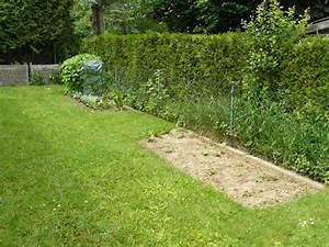 Beet Vor Terrasse Anlegen : balkon garten terrasse zeigt her was ihr so anpflanzt kaninchen forum by sweetrabbits ~ Markanthonyermac.com Haus und Dekorationen