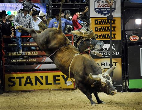 bushwacker   professional bull riders st