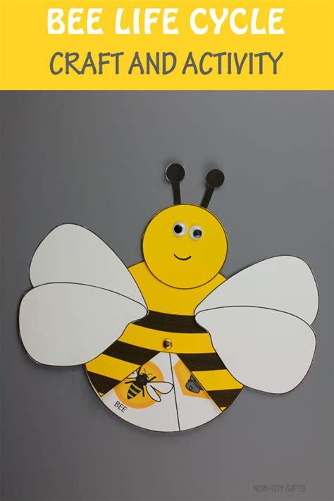 bee life cycle craft  activity  kids printable