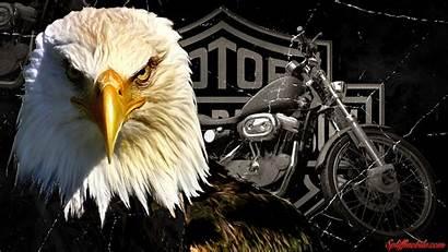 Harley Davidson Wallpapers Background Screensavers 1080 Eagle