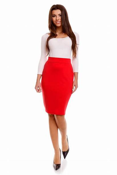 Skirt Pencil Zipper Fastening Outfit Professional Polished