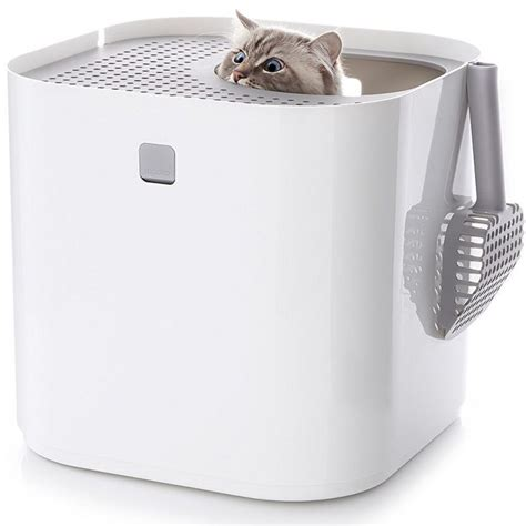 cool litter box stylish top entry litter box modkat litter box review cool stuff for cats