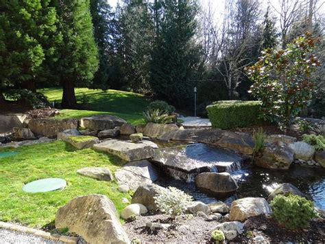 persnickety landscaping 1000 images about pond w waterfall ideas on pinterest
