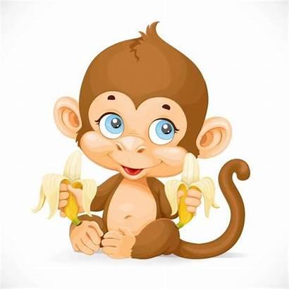 Monkey Banana Clip Monkeys Drawing Clipart Vector