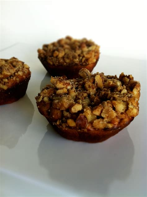 damys  protein ball bar  muffin recipes
