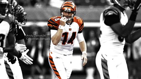 hd cincinnati bengals wallpapers pixelstalknet