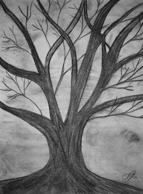 Original Drawing Charcoal Old Dead Tree by