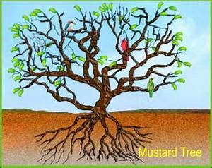 Mustard seed | The Journey