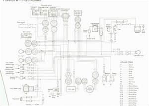 1994 Yamaha Timberwolf 250 Wiring Diagram
