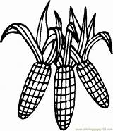 Corn Coloring Pages Thanksgiving Stalk Cob Drawing Clipart Printable Outline Clip Cornstalk Sheets Colouring Pdf Holidays Candy Coloringpages101 Clipartmag Getdrawings sketch template