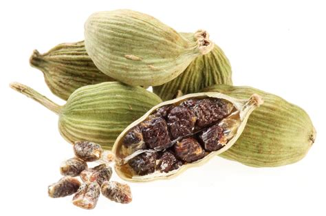 cardamom seeds your daily dose of cardamom john douilard s lifespa