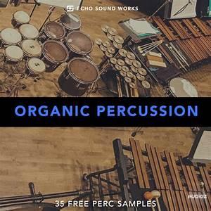 Download Echo Sound Works : Organic Percussion V.1 WAV ...