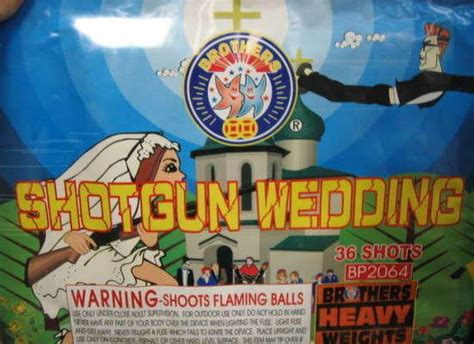 ridiculous fireworks brand names  gallery