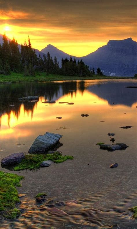 amazing pictures  beautiful nature hd wallpaper apk