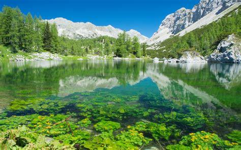 Lake And Mountain View Slovenia
