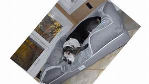 best indestructible chew proof dog bed reviews in dog beds With bedlounge reviews