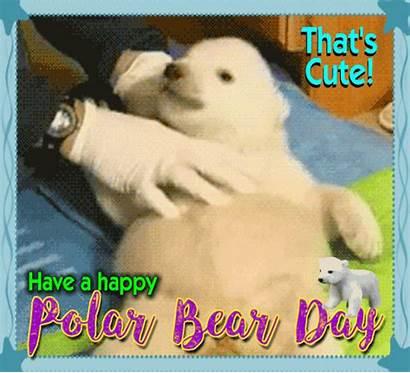 Polar Bear Ecard Very Send Ecards Card