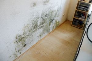 schimmel im schlafzimmer schimmel im schlafzimmer ursache folgen und beseitigung