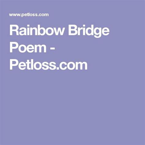ideas  rainbow bridge poem  pinterest