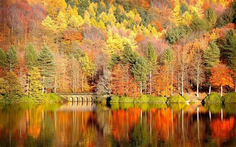 fall computer backgrounds fall backgrounds desktop 183