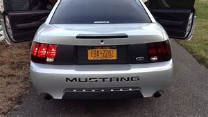 2003 Mustang Tail Light Harness  2003  Free Engine Image