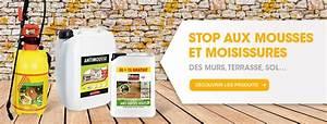 Anti Mousse Brico Depot : brico d p t magasin de bricolage prix d p t ~ Dailycaller-alerts.com Idées de Décoration