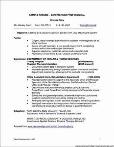 Sample resume format for experienced it professionals for It resume samples for experienced professionals