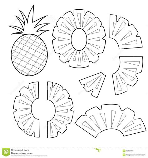 pineapple fruit outline version for coloring book vector